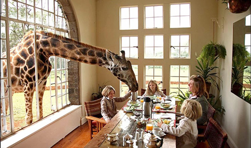 ジラフ マナー(Giraffe Manor) ケニア