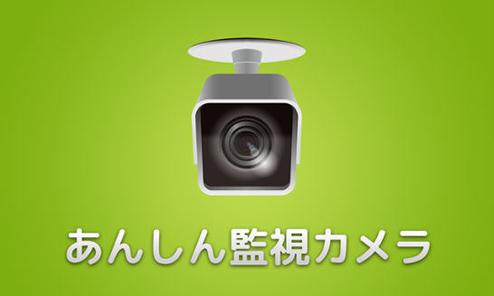 監視カメラにする